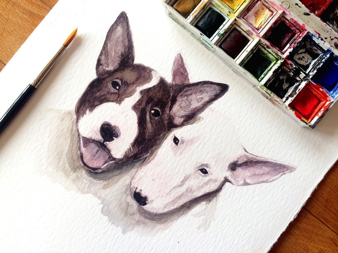 Retrato Bull terriers