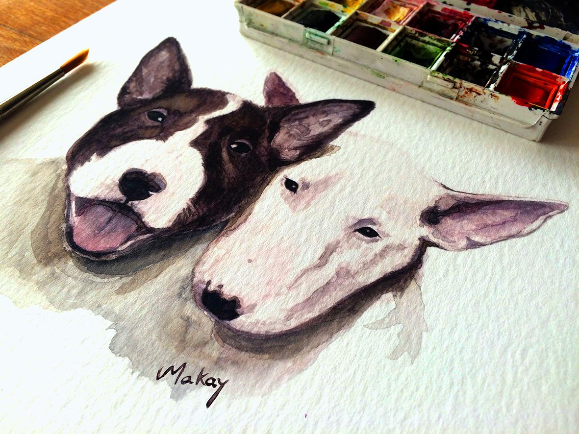 Bull terriers Lover